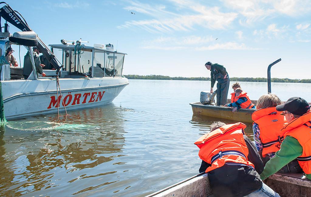 Skolklass besöker Projekt Ringsjön Foto: Richard Nilsson