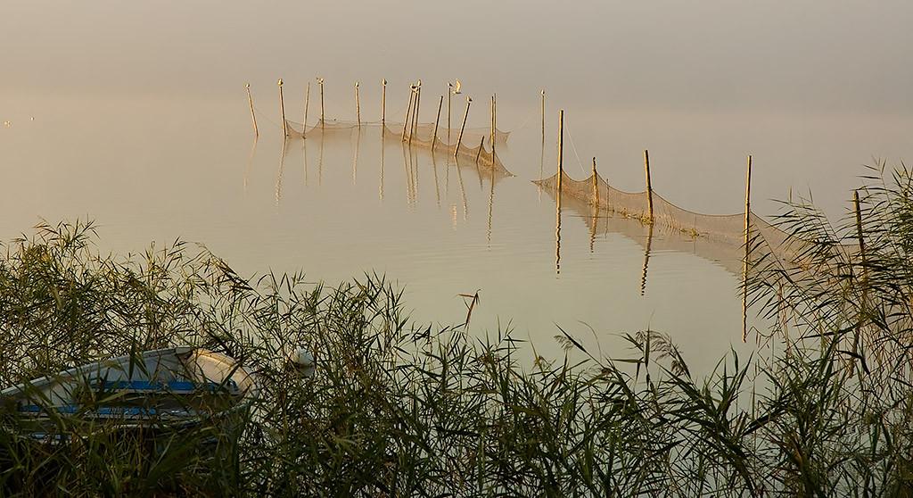 Bottengarn i en vik utanför Sätofta. Foto: Richard Nilsson