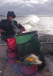 Jimmy Lindahl på väg att hämta upp provfiskenät i Västra Ringsjön.