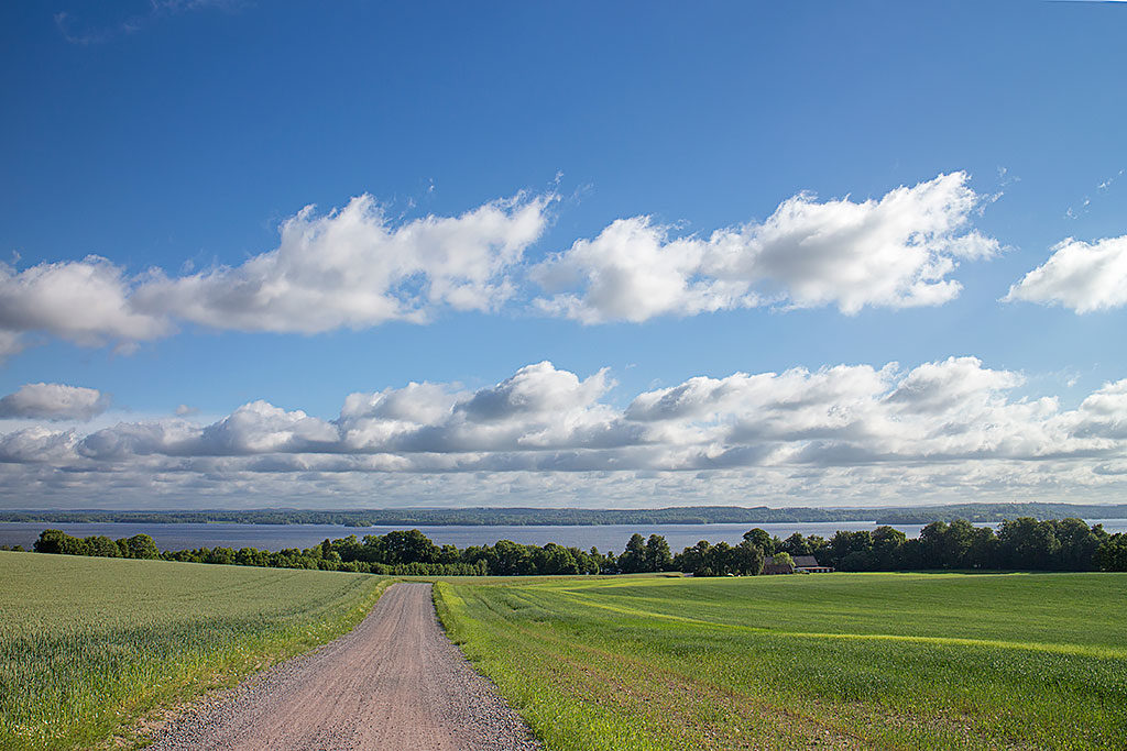 Utsikt över Västra Ringsjön från höjderna ovanför Råröd. Foto: Birgitta Bengtsson