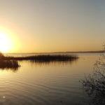 Vy över Västra Ringsjön vid Rönne ås utlopp en novembermorgon 2017. Foto: Richard Nilsson