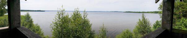 Utsikt över Östra Ringsjön från fågeltornet i Fulltofta 25 juni 2019. Foto: Richard Nilsson