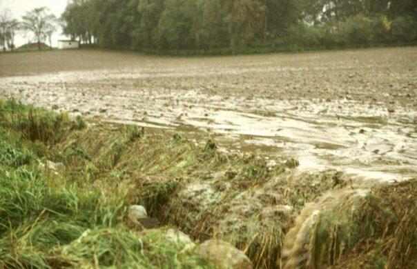 Ytavrinning och erosion av åkermark påverkar näringshalten i vattnet och är negativt för Ringsjön. Foto: Vought & Lacoursière