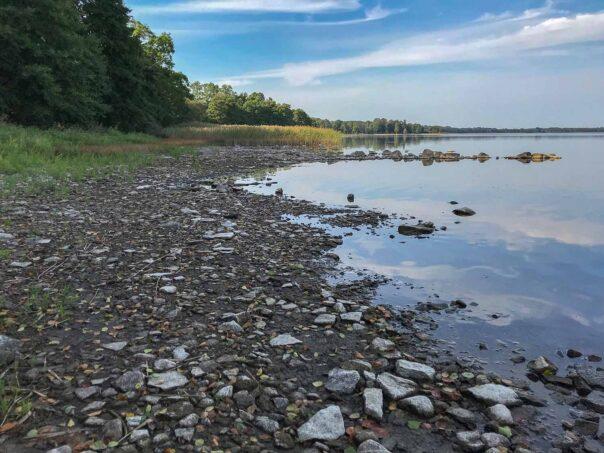 Lågt vattenstånd vid Västra Ringsjön
